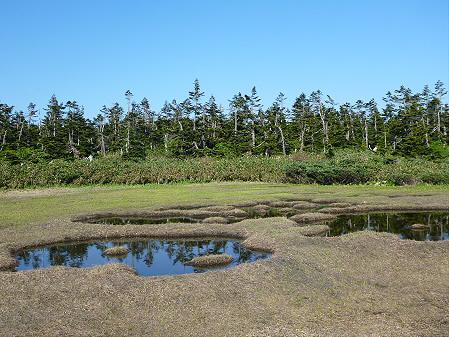 八幡平山頂へ行ってみた54(2012.6.26)