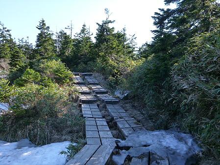 八幡平山頂へ行ってみた60(2012.6.26)