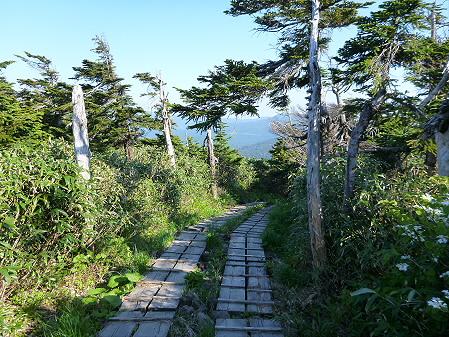 八幡平山頂へ行ってみた64(2012.6.26)
