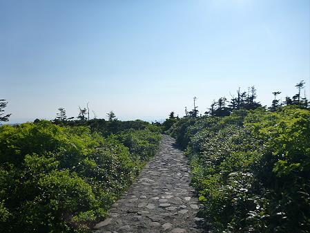 八幡平山頂へ行ってみた67(2012.6.26)