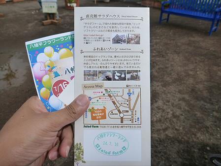 八幡平フラワーランド花03(2012.7.16)