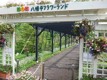 八幡平フラワーランド花04(2012.7.16)