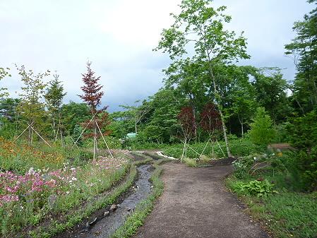 八幡平フラワーランド花18(2012.7.16)