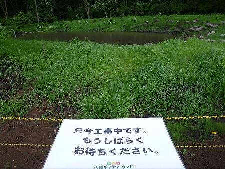 八幡平フラワーランド花26(2012.7.16)