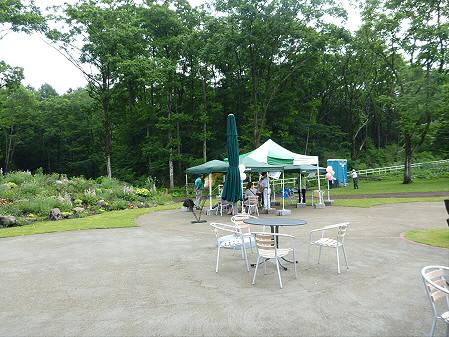 八幡平フラワーランド花27(2012.7.16)