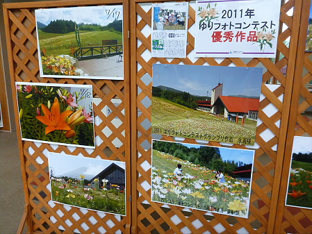 八幡平リゾートゆりガーデン2012 07(2012.7.16)