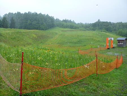 八幡平リゾートゆりガーデン2012 17(2012.7.16)