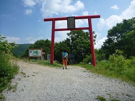 夏の赤沼04(2012.7.31)