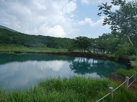 夏の赤沼23(2012.7.31)