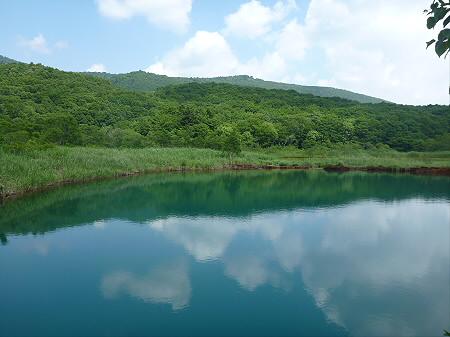 夏の赤沼24(2012.7.31)