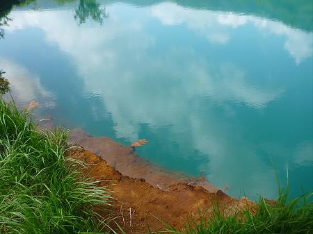 夏の赤沼25(2012.7.31)
