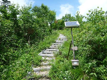 夏の茶臼岳07(2012.7.31)