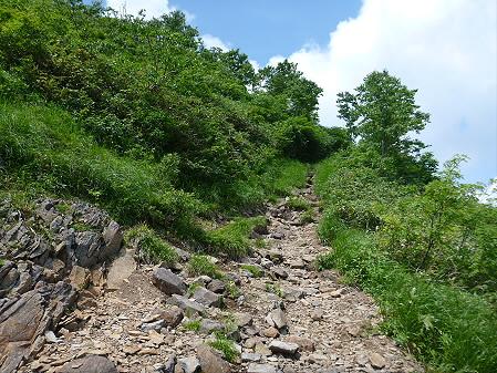 夏の茶臼岳29(2012.7.31)