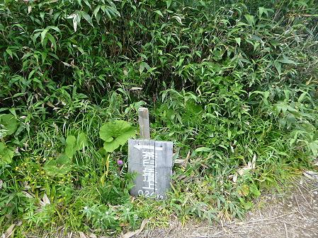 夏の茶臼岳31(2012.7.31)