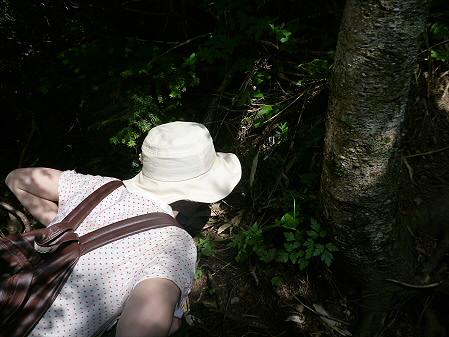 夏の茶臼岳60(2012.7.31)