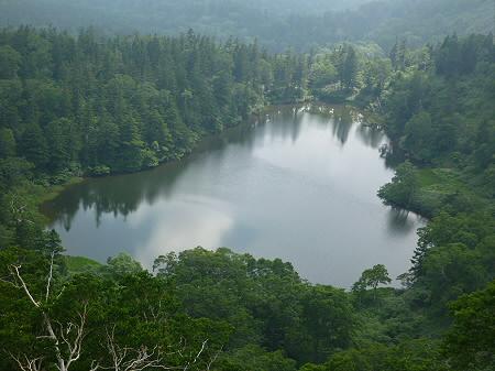 夏の黒谷地湿原03(2012.7.31)