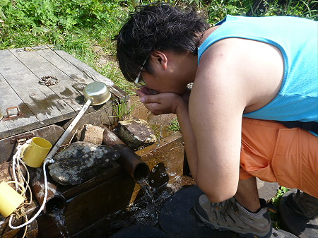 夏の黒谷地湿原19(2012.7.31)