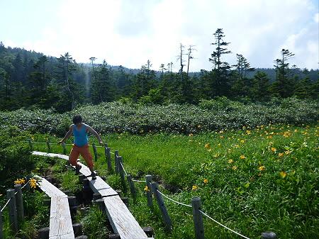 夏の黒谷地湿原30(2012.7.31)ジャンプ!
