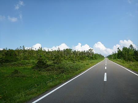夏の黒谷地湿原37(2012.7.31)