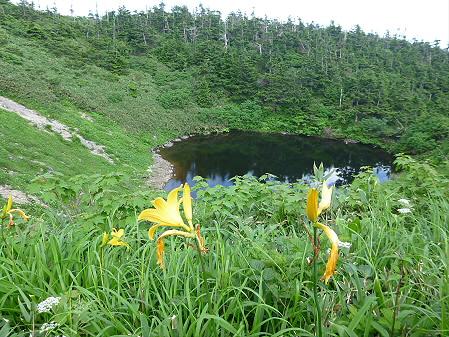 八幡平山頂散策26(2012.7.31)