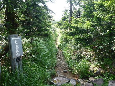 八幡平山頂散策30(2012.7.31)