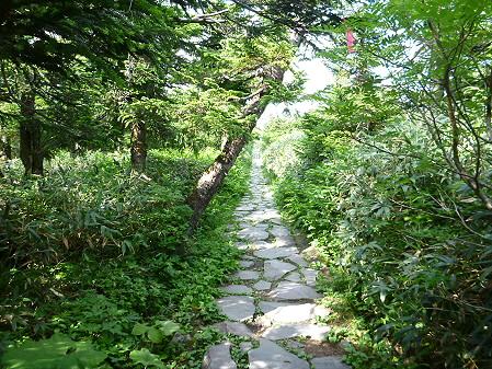 八幡平山頂散策31(2012.7.31)