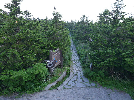 八幡平山頂散策35(2012.7.31)
