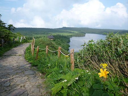 八幡平山頂散策その2 02(2012.7.31)