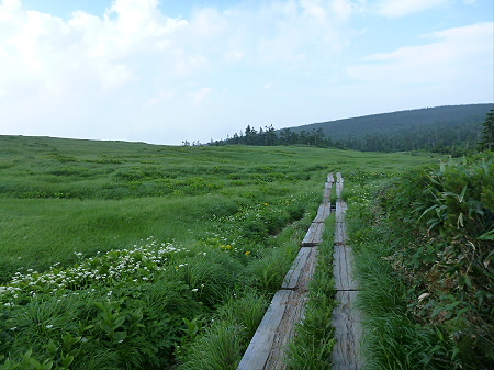 八幡平山頂散策その2 11(2012.7.31)