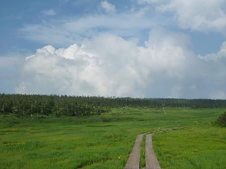 八幡平山頂散策その2 13(2012.7.31)