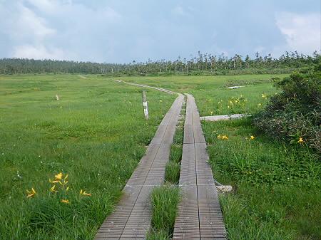 八幡平山頂散策その2 15(2012.7.31)