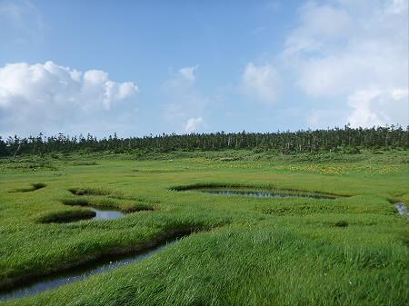 八幡平山頂散策その2 27(2012.7.31)