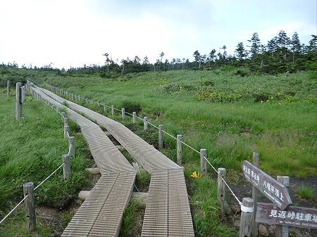 八幡平山頂散策その2 35(2012.7.31)