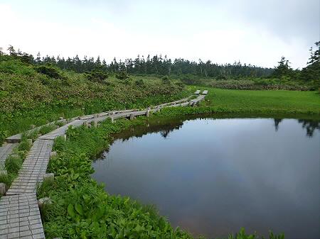 八幡平山頂散策その3 01(2012.7.31)