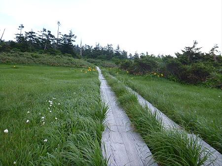 八幡平山頂散策その3 07(2012.7.31)
