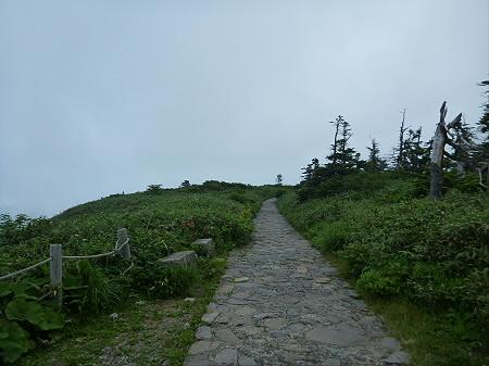 八幡平山頂散策その3 31(2012.7.31)