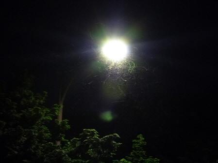 キレイな夕方の雲たち08(2012.8.22)