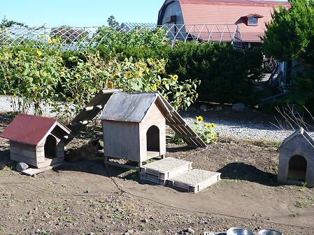 犬小屋スリー01(2012.9.1)