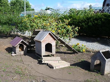 犬小屋スリー01(2012.9.3)