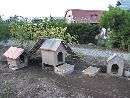 犬小屋スリー03(2012.9.8)