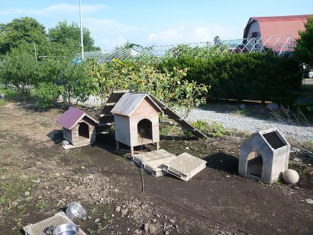 犬小屋スリー01(2012.9.11)