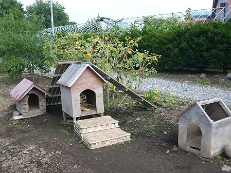 犬小屋スリー01(2012.9.12)