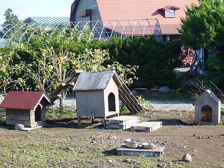 犬小屋スリー01(2012.9.15)