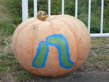 かぼちゃ02(2012.9.19)