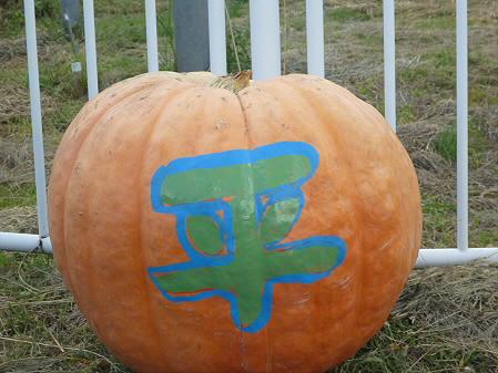 かぼちゃ04(2012.9.19)