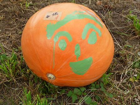 かぼちゃ12(2012.9.19)