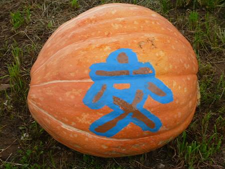 かぼちゃ14(2012.9.19)