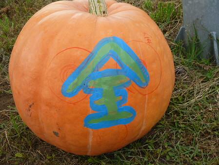 かぼちゃ17(2012.9.19)