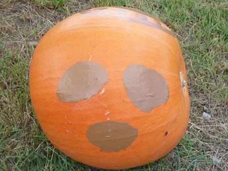 かぼちゃ18(2012.9.19)