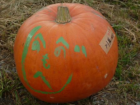 かぼちゃ20(2012.9.19)